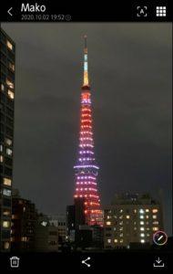 Tokyotawer3